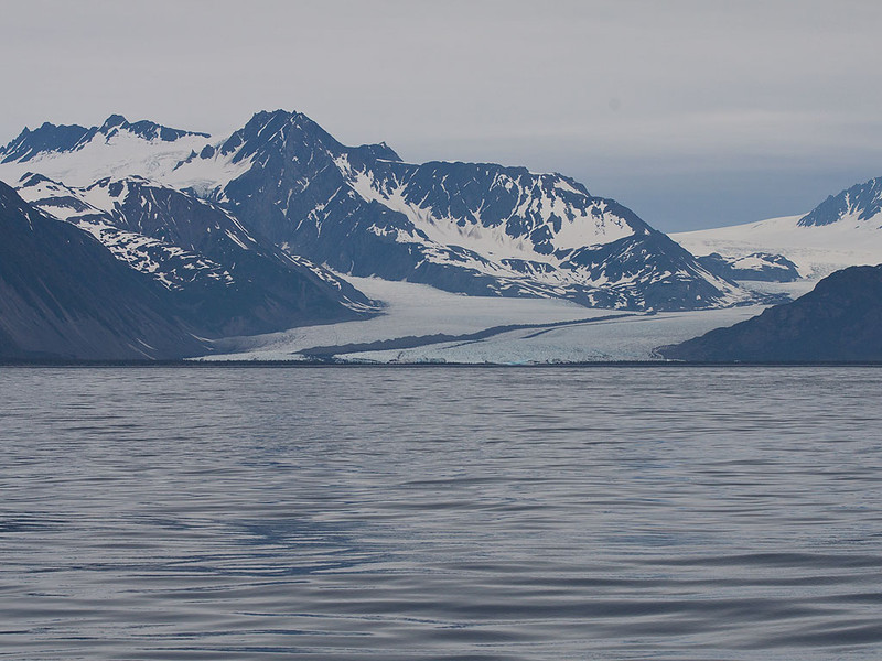 IMG_9598  Bear Glacier (59.66N 149.30W) off of Resurrection Bay (59.56N 149.23W)