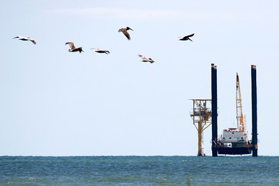 Five pelicans and an offshore jackup rig northeast of Freeport