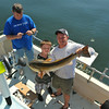 Bull Red Fish (32 inches) landed on the Ospo offshore trip along with cooler fulls of Black Sea Bass on 04/12/14