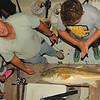 Redfish caught on Ospo during Night Time Shark Trip 07-31-14