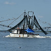 Warrior Shrimp Boat 10-03-19