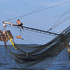 Shrimp Boats of the Golden Isles - Capt Sam
