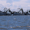 Shrimp Boats of the Golden Isles - Triple Anchor