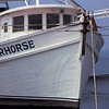 Shrimp Boats of the Golden Isles - Warhorse