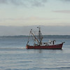 Shrimp Boats off St. Simons Island, Georgia 09-30-10