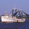 Shrimp Boats of the Golden Isles - Miss Carolyn A