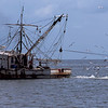 Shrimp Boats of the Golden Isles - Ca-oc
