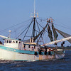 Shrimp Boats of the Golden Isles - Jean M
