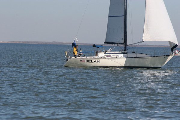 Iceberg Race - Galveston