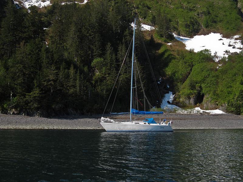 IMG_1823_ps   Quicksand Cove, Aialik Bay