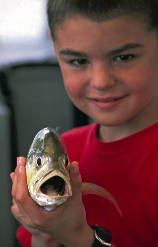 A Boy and his Fish at Jekyll Wharf Marina, Jekyll Island, Georgia