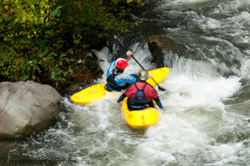 Kayaking in the Smoky Mountains