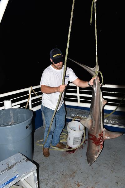 Lady Jane and Credle's Adventures, LLC Friday Night Shark Fishing