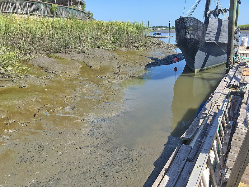 Credle's Adventures Dock at low tide on 07-26-16