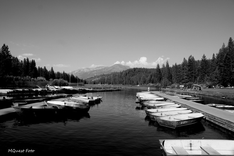 Hume Lake - Sequoia (docks of the bay)