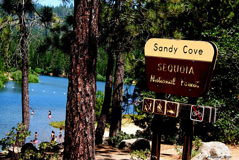 Sandy Cove - Sequoia - National Forest -(hume lake)