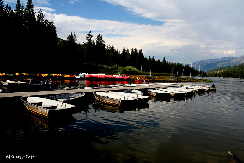 Miss Adventure - Ms. Adventure- Mrs. Adventuee -  Mist adventure - Myst adventure - A three hour tour - Hume Lake Sequoia