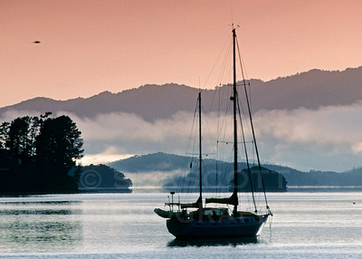 Bay of Islands, Opua, New Zealand.