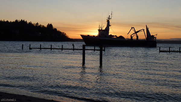 Maritime / Shilshole Marina