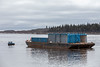 Small Moosonee Transportation Limited tug brings a large barge down the Moose River from its winter storage location 2018 May 23rd.