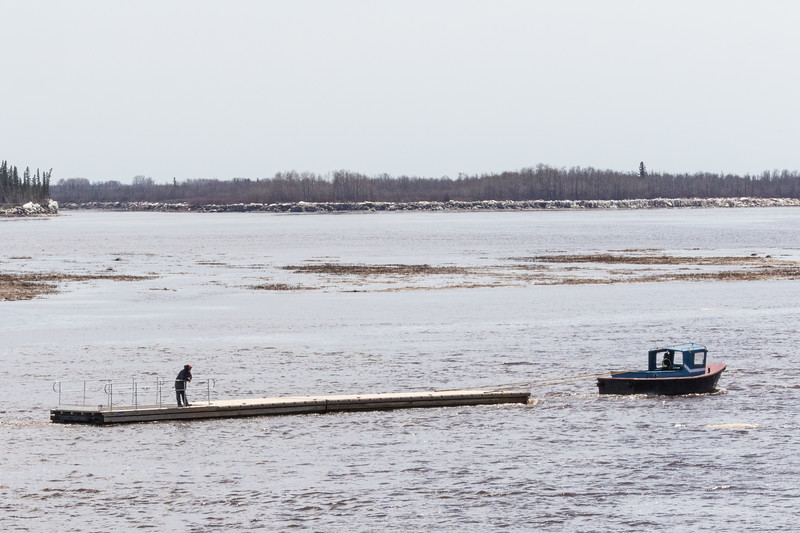 A small Moosonee Transportation Limited tug tows sections of the Moosonee public docks up the river to the public docks site 2018 May 23rd.