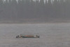 Floating boat being rescued from sandbar.