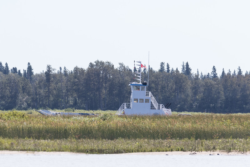 Barge Niska I on the far side of the sandbar on its way to Moosonee.