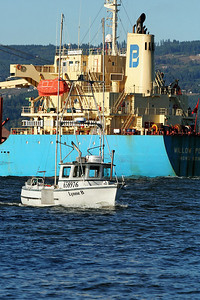WILLOW POINT IMO number : 9252058 / Fishing Boat Lynne B
