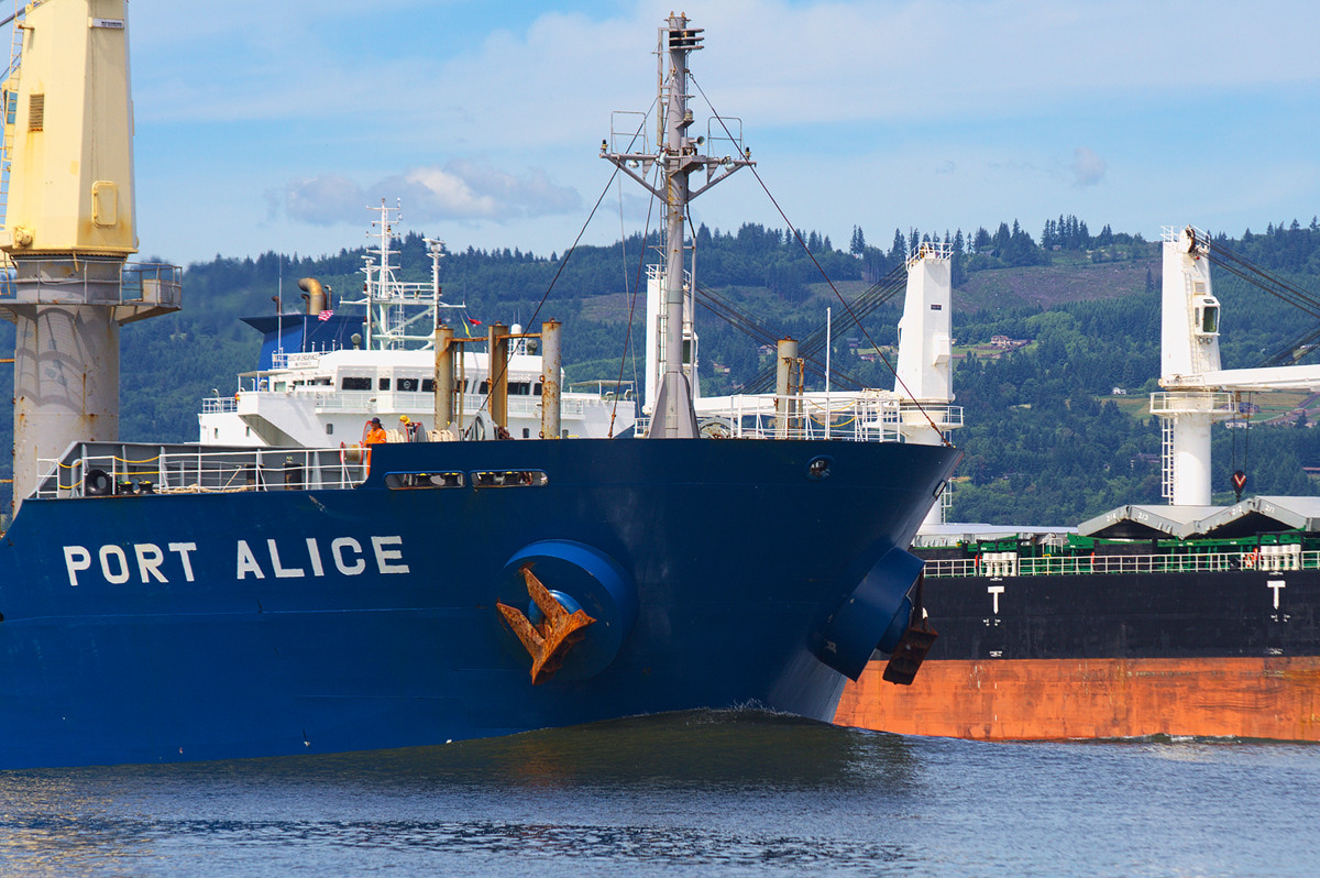 PORT ALICE (IMO 9311402) and SEASTAR ENDURANCE (IMO 9588873) side-by-side on the Columbia River