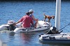 Dock Party 0006 2010