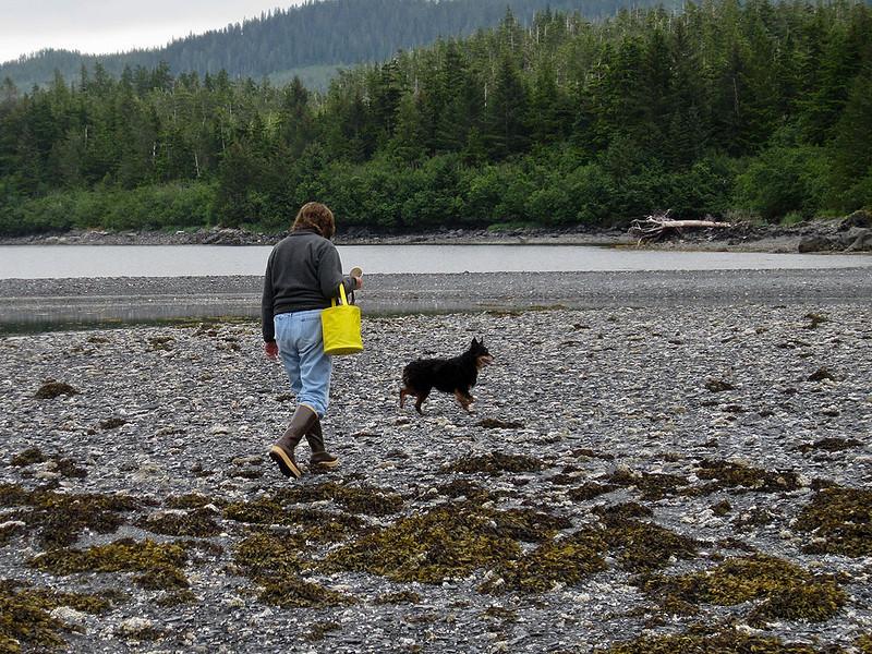 img_2264  Treasure hunting at Fox Farm Bay