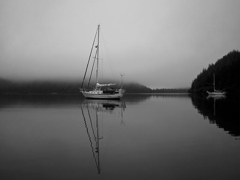img_2273  Fox Farm Bay on a foggy morning.