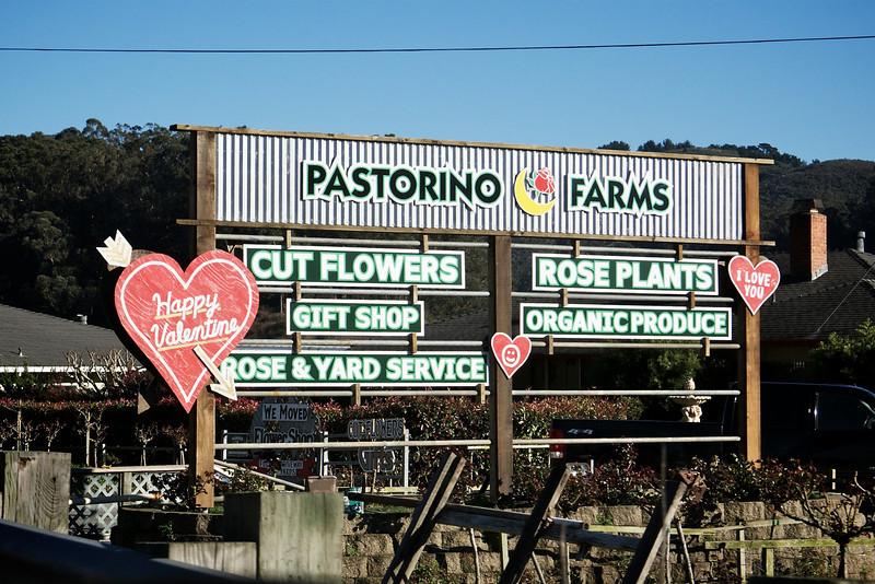 Pasorino Farms