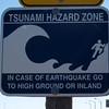 Run from the Tsunami!