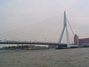 Erasmus bridge. All these people on the bridge are going to look at the Queen Mary 2