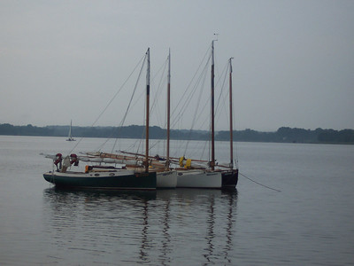 A pretty picture of the Catboats, some of which sailed over from Rock Hall.