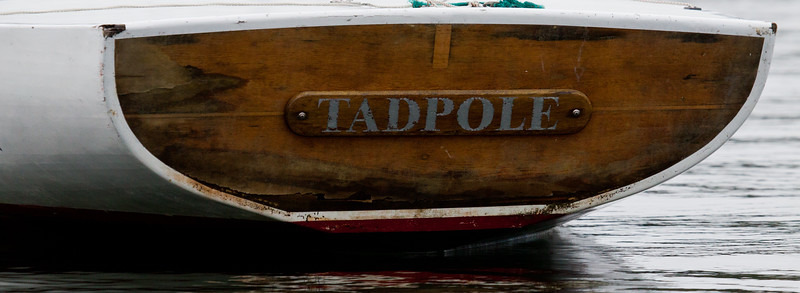 """stern board of sailboat, """"Tadpole"""", brightwork,  photograph, image, photography, Vacationland, sailing race, Small Point Sailing Club"""