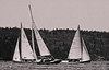 Sail race, study in black and white, Small Point boats, Phippsburg Maine ,photograph, image, photography, Vacationland, sailing race, Small Point Sailing Club