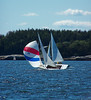 "Spinaker sail 22 ""Glimmer""  and #23 ""Coo-Coo"" ,photograph, image, photography, Vacationland, sailing race, Small Point Sailing Club"