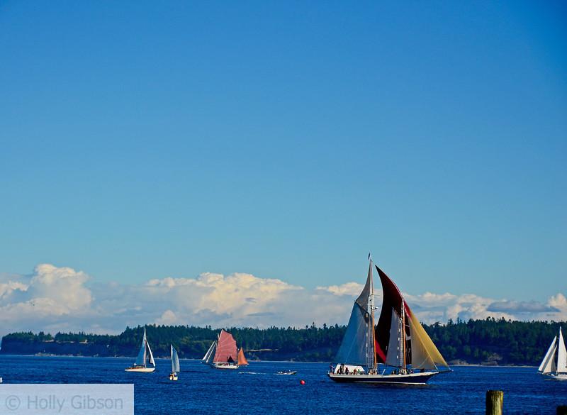 Sailboats - Port Townsend, Washington - 65
