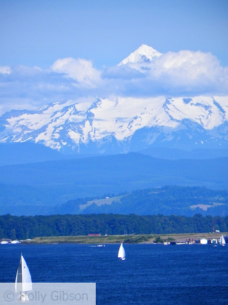 Sailboats and Mt. Hood - 31