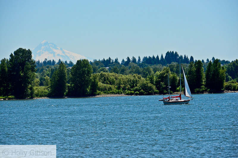 Sailboat and Mt. Hood - 48