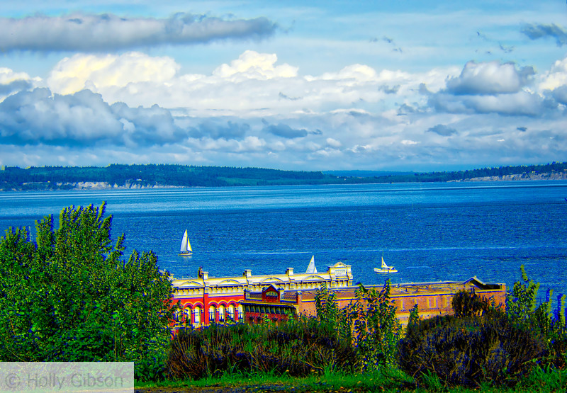 Sailboat - Port Townsend - 64