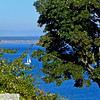 Sailboat in the trees - 43