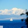 Sailboats - Port Townsend, Washington - 67
