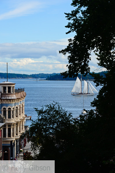 Sailboats - Port Townsend - 63