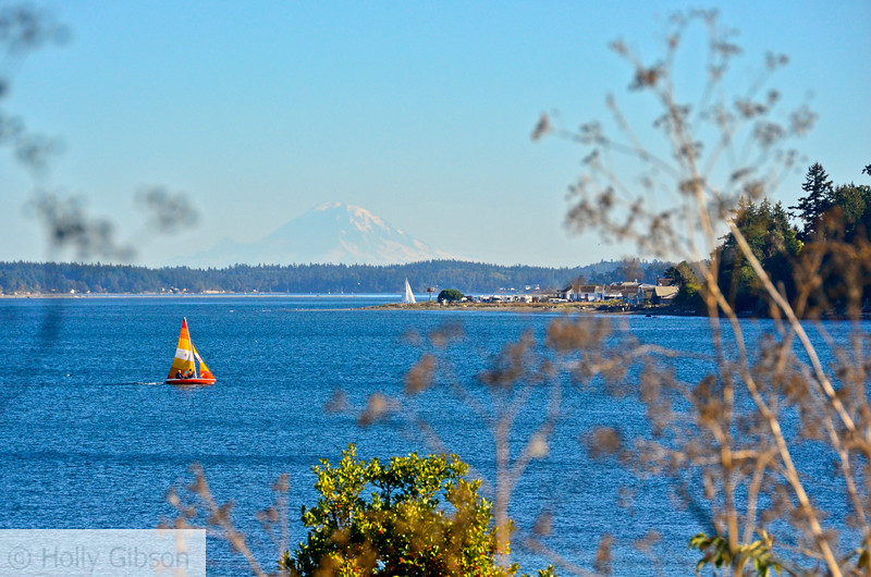 Sailboat near Ft. Worden with Rainier in the background - 77