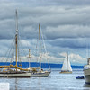 Sailboats - Port Townsend, WA - 59
