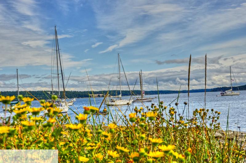 Sailboats - Port Townsend, WA - 62