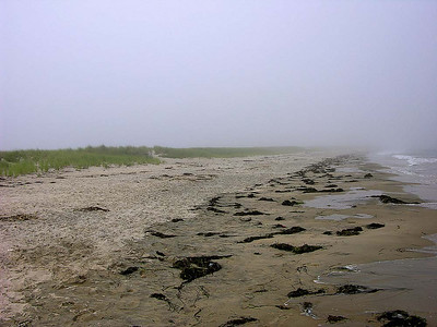 Sailing in the Fog_24